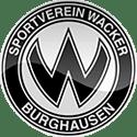 Schweinfurt vs Burghausen Betting Tips
